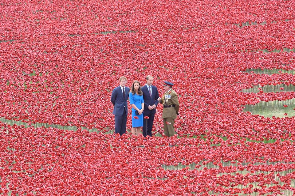 Tower of London marks WW1 centenary with a sea of poppies Tower of London marks WW1 centenary with a sea of poppies 10559758 10153063939869278 3463992010070663637 n